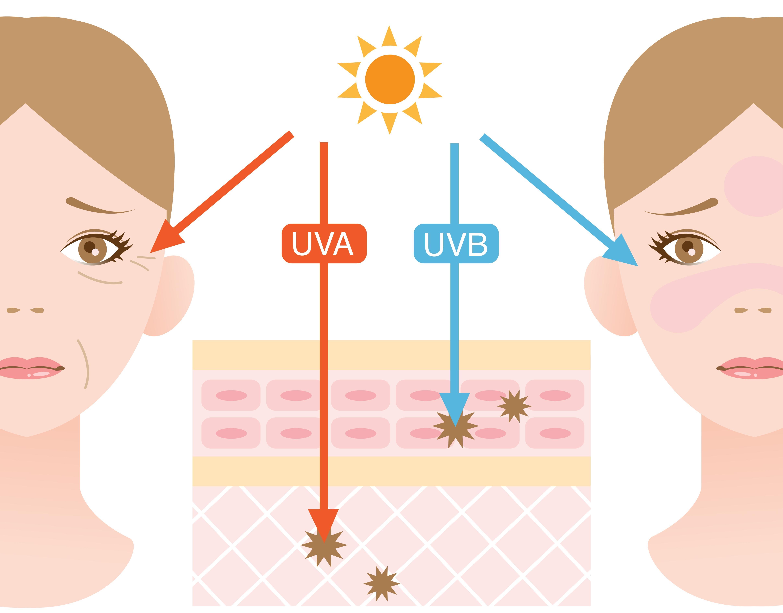 Sonce in njegovi učinki na kožo
